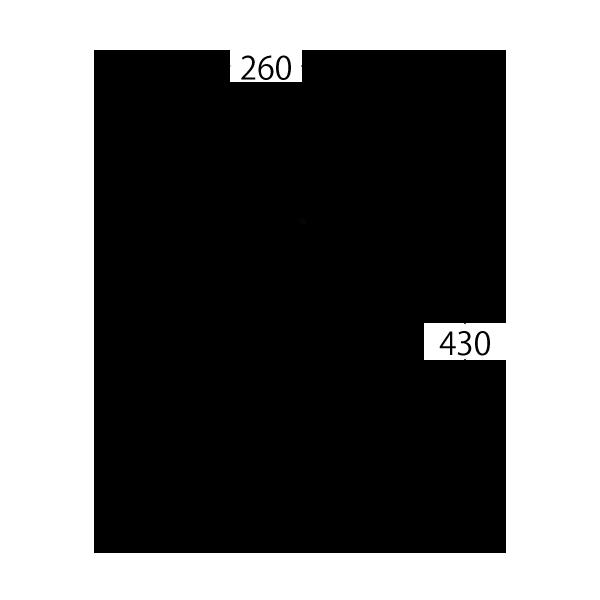 TRL-C10
